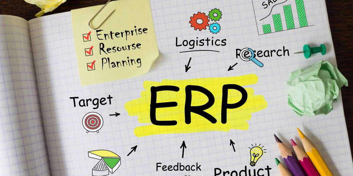ERP software and the need for specialization in each sector
